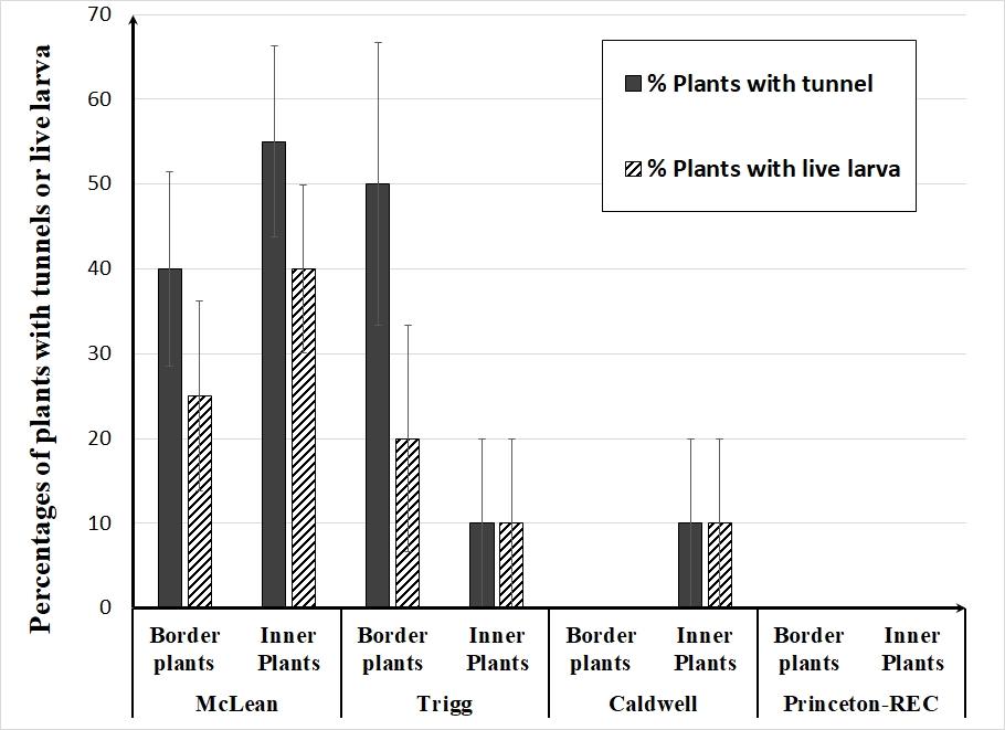 dectes-soybeans-figure-3.jpg