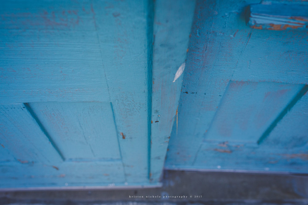When you see a blue door my gosh you STOP AND CLICK THAT SHUTTER! How beautiful is this door?