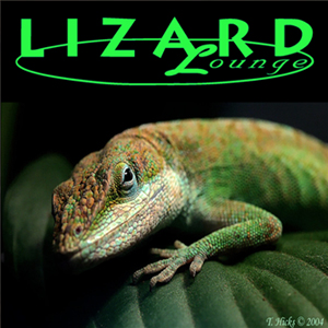 THE LIZARD LOUNGE