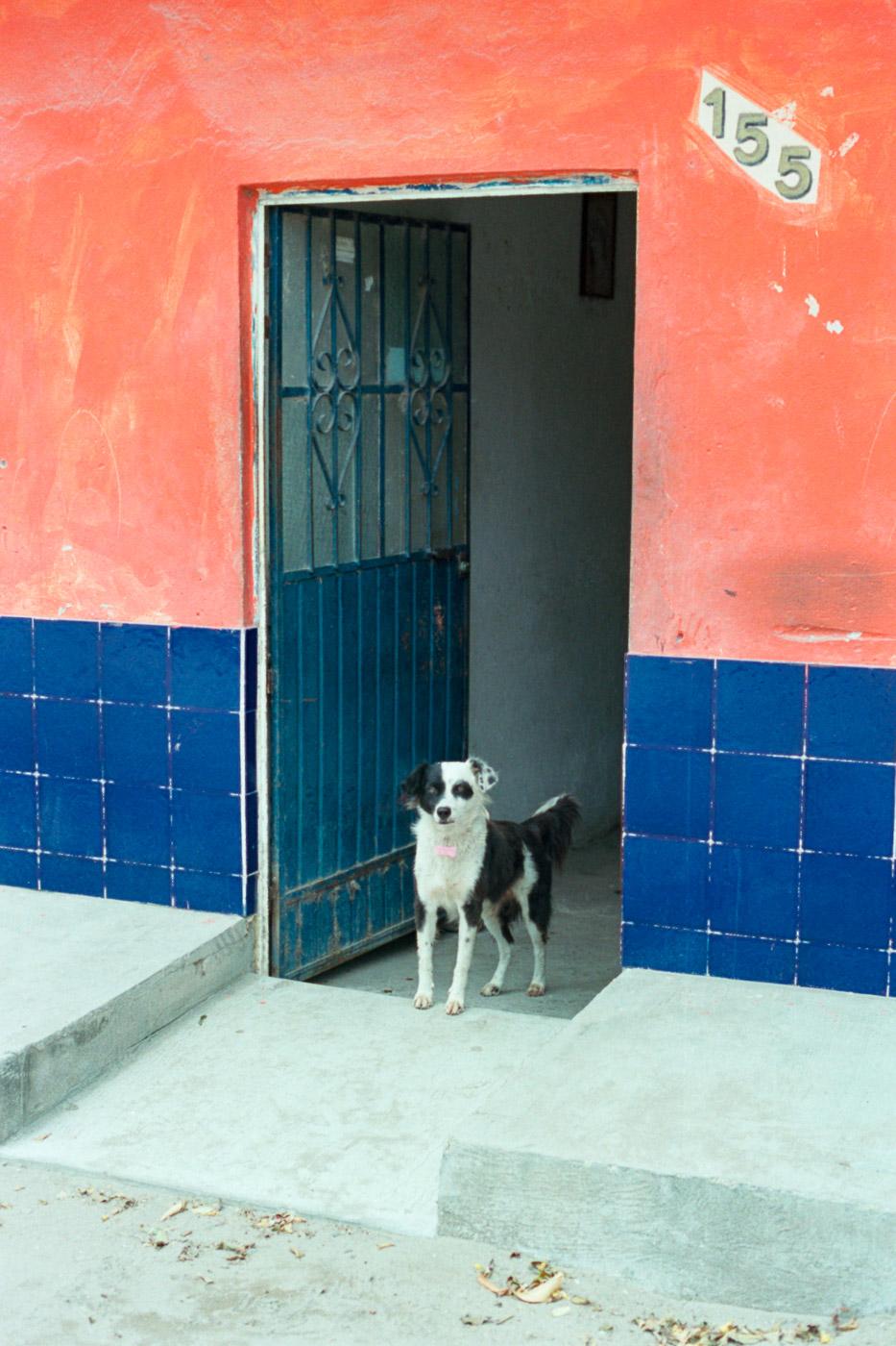8-Mexico-Portra400-028.jpg