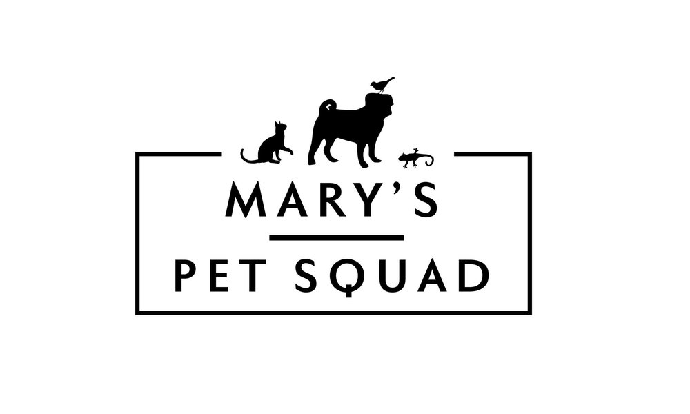 Mary's Pet Squad, Bethesda, Dog Walk, Cat Care, Reptile, Bird, Pet Sitting