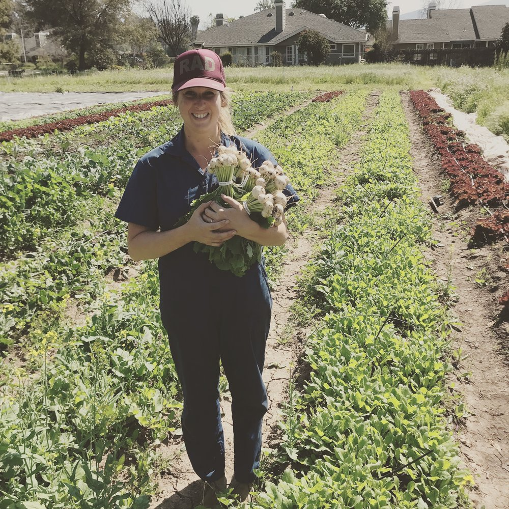 4 Day Farm Internship - Curious about farming and want to know what it takes?