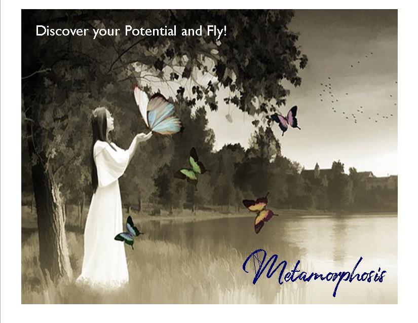 metamorphosis postcard 1.jpg