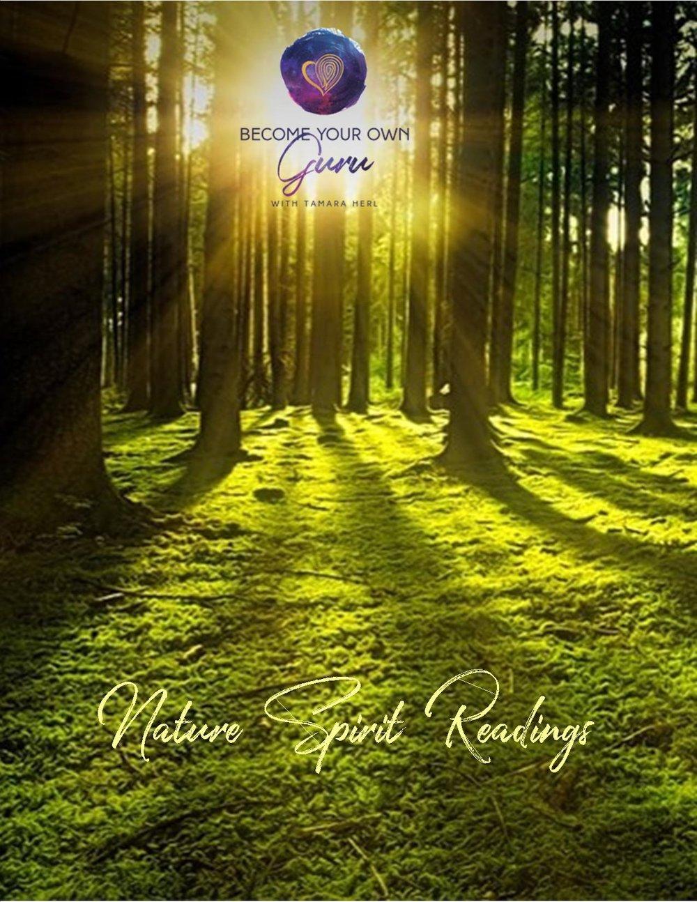 nature spirit readings sign.jpg