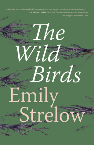 Review of THE WILD BIRDS by Emily Strelow.jpg