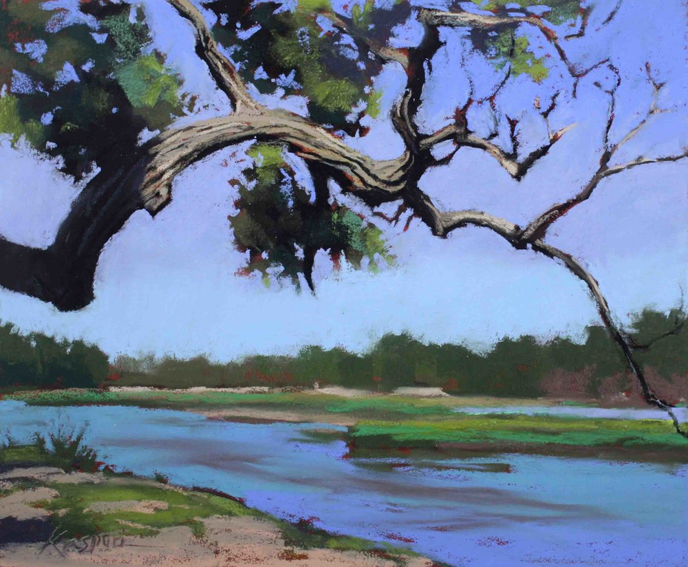 Platte River Cottonwood  by Debby Kaspari