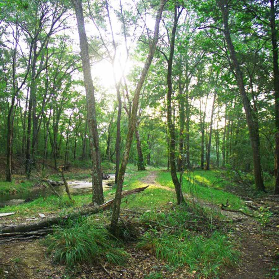 Hiking Broken Bow Trail (Square).JPG
