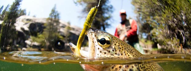 Top Things to do in Broken Bow | Fly Fishing