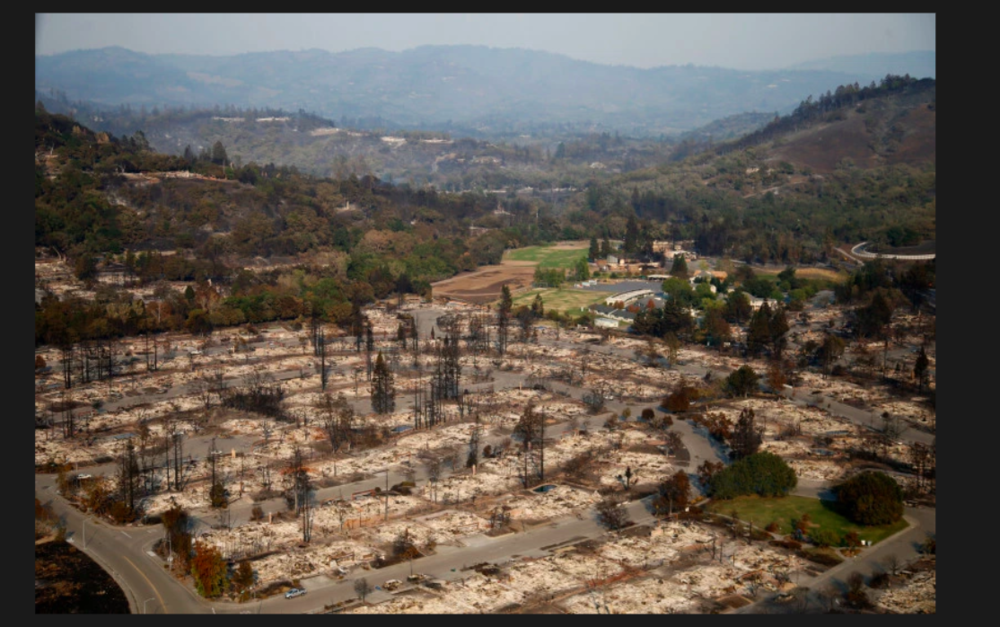 For more pictures of the aftermath of the fires click  h ere
