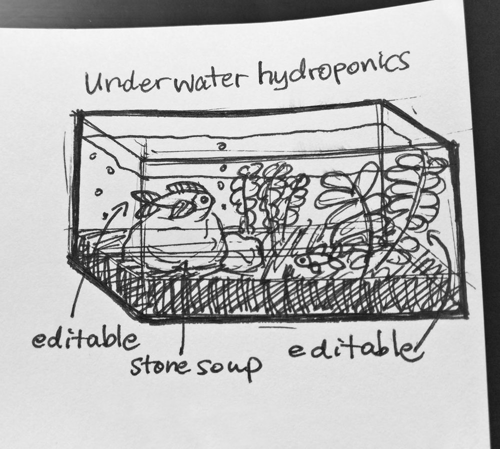 Day 4 : How about an urban underwater hydroponics fish farm? Basil is nice but could I grow my own seaweed? Everything would be edible, sustainable, and would fit in my little city apartment #100DaysofFooood #The100DayProject