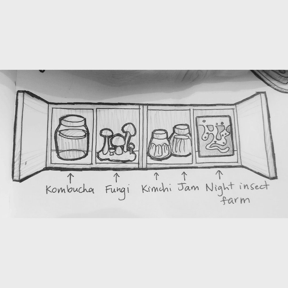 Day 23 : I've always wanted a fermented garden. Kombucha, alcohol, pickles, cheese, kefir, sourdough, vinegars, soy sauce, and, and, and... #100DaysofFooood #The100DayProject