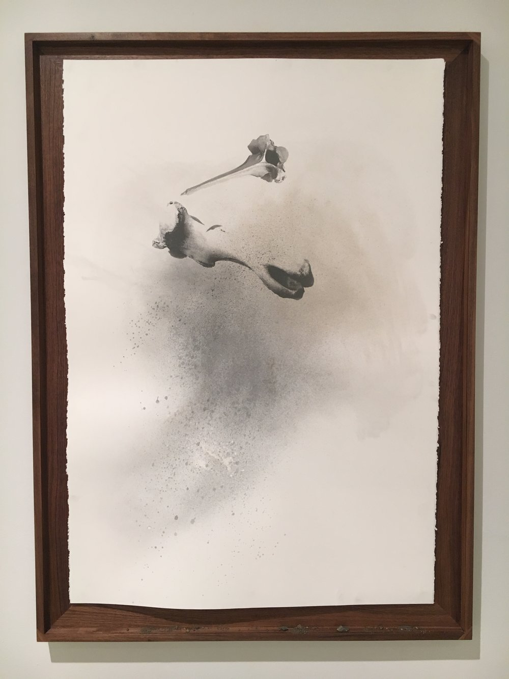 Nate Young,   Casting 5,  2017  Serigraph with earth and graphite on paper  Image courtesy of the Visual Arts Center of Richmond