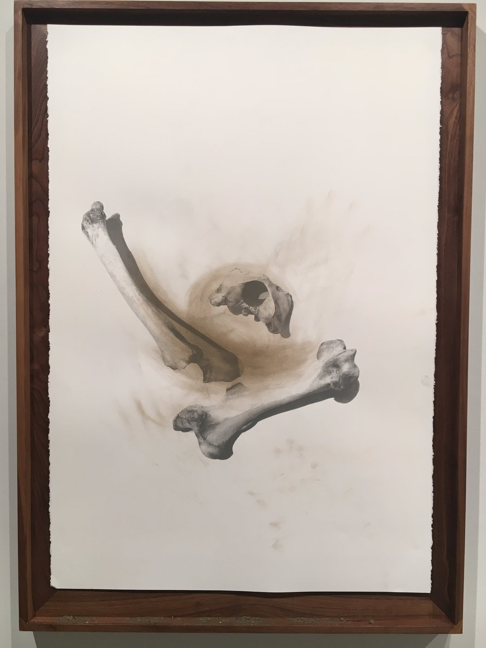Nate Young,   Casting 1,  2017  Serigraph with earth and graphite on paper  Image courtesy of the Visual Arts Center of Richmond
