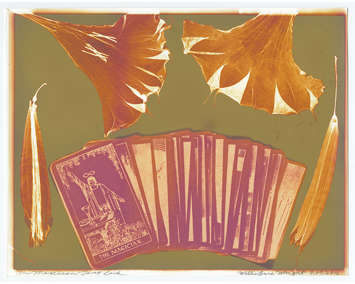 """Willie Anne Wright, """"The Magician""""from Channeling the Tarot,2016.Lumen print.Image courtesy of the artist and Candela Gallery, Richmond."""