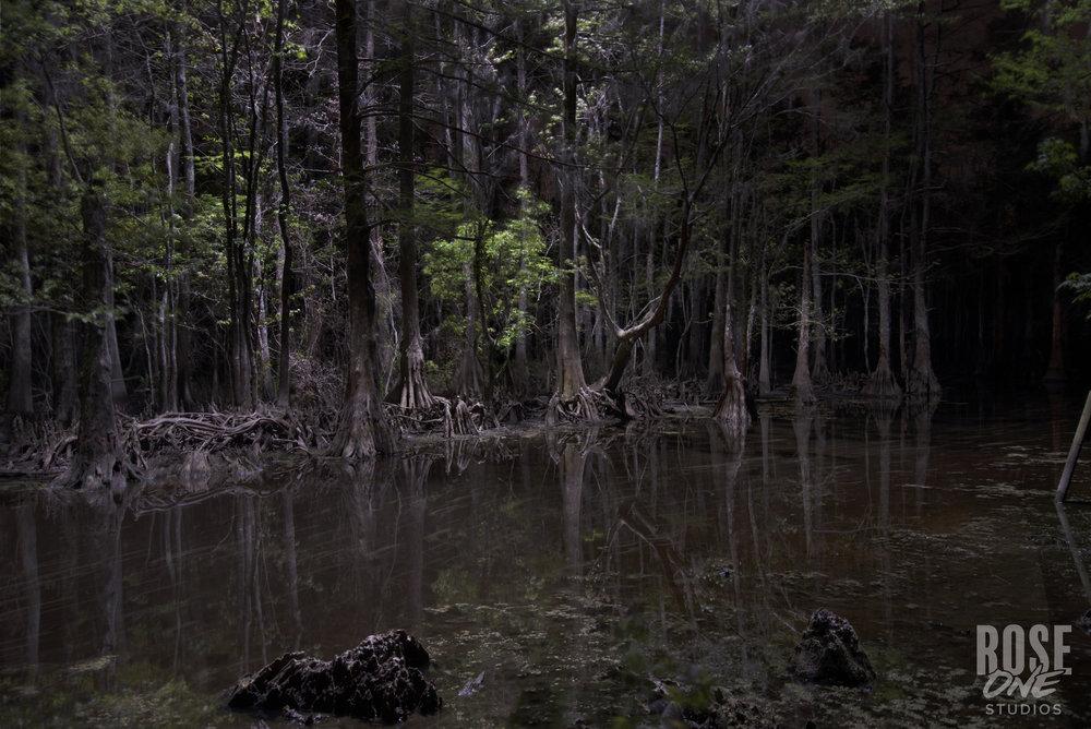 Bear Island Bayou