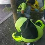1 - 1 - 8DjOV2sz clean sweep clean up