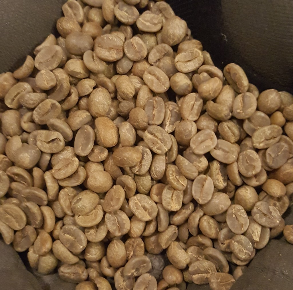 1 - 1 - 20161127_201830-1 unroasted Las Lajas Coffee