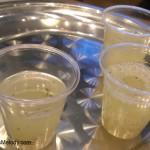IMAG4588 Evolution Fresh Minted Lemon Juice 8 April 2013