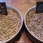 IMAG9568 Green beans