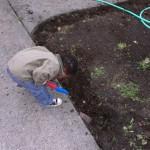 IMAG0080 Adam helps dig the trough 19Apr14