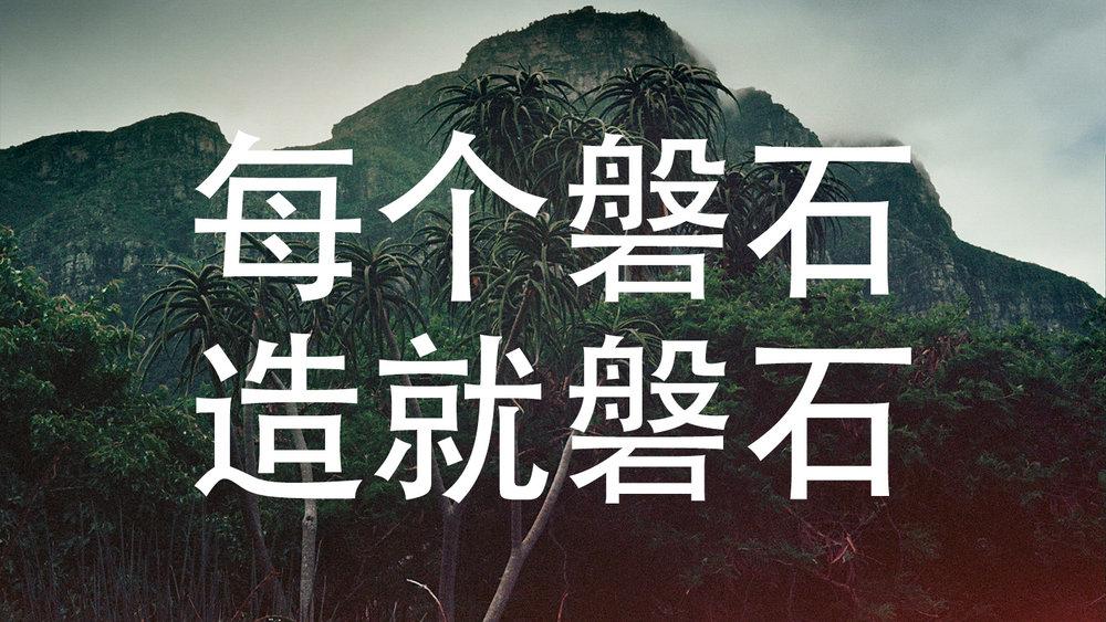 描述全球使命的丛林摄影