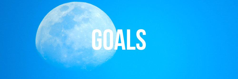 goal banner.JPG