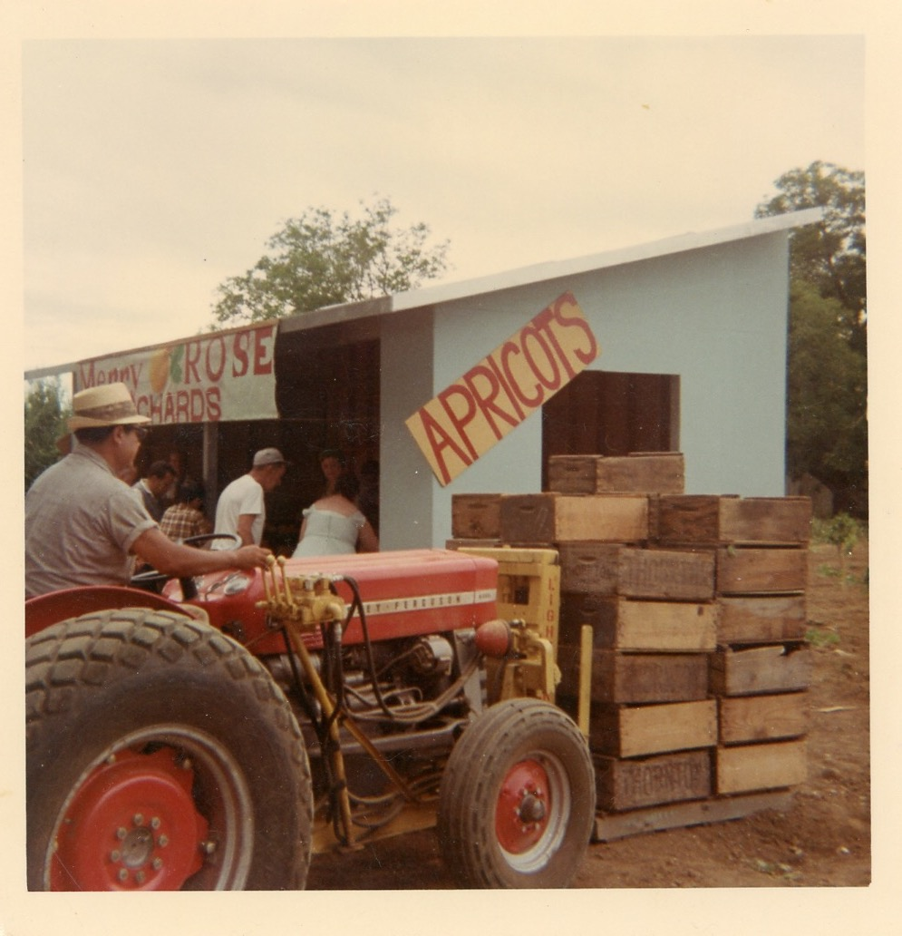 Our Fruit Stand in 1968