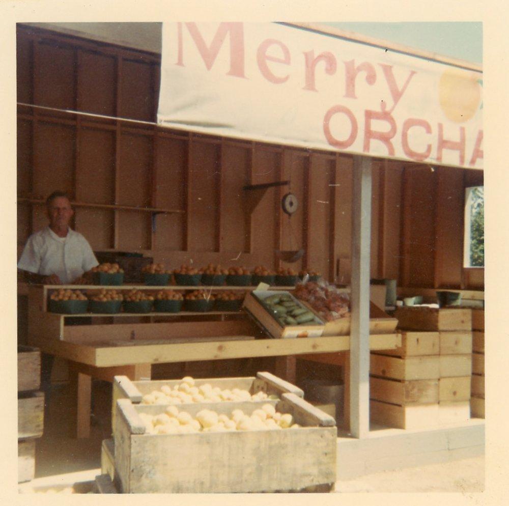 Merry Rose 1968