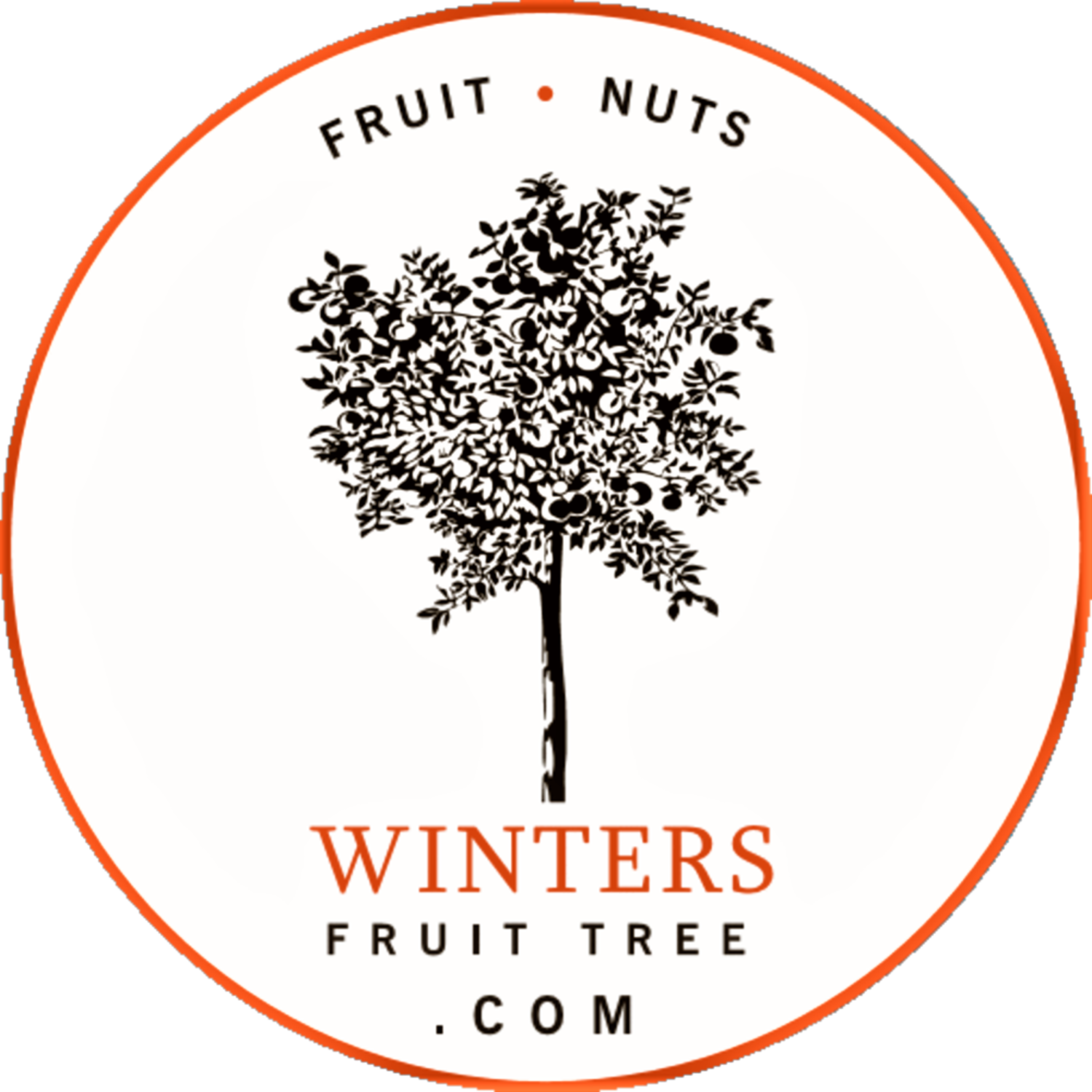 Winters Fruit Tree