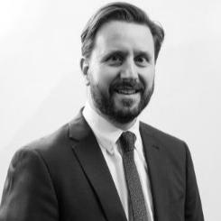 DANIEL DE MARINIS  Lead Consultant