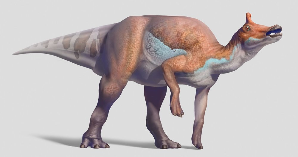 Augustynolophus_color_layers.jpg