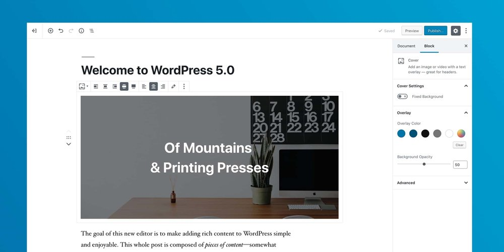 WordPress-5.jpeg