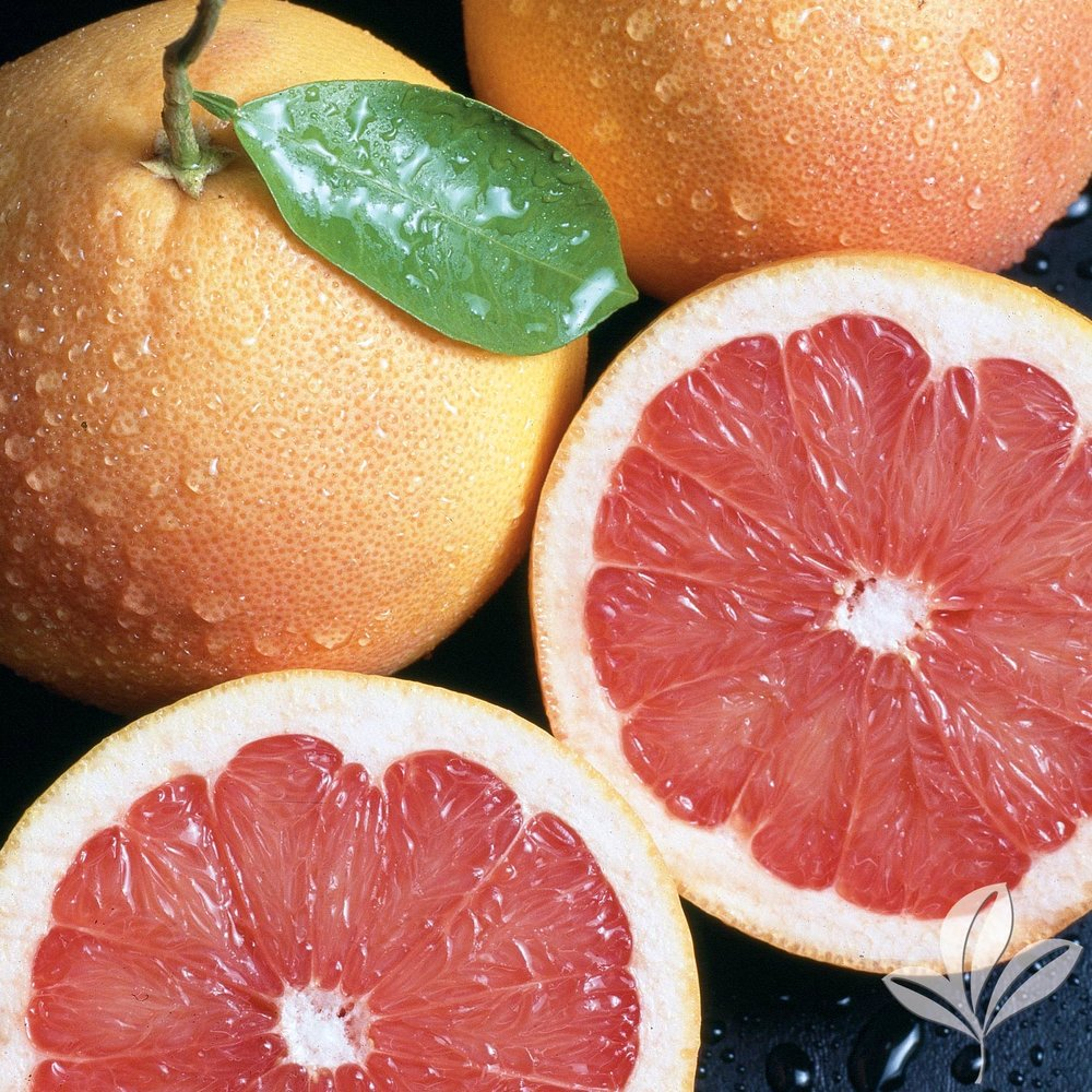 Red Grapefruit Chandler Red Pummelo 1026541.jpg