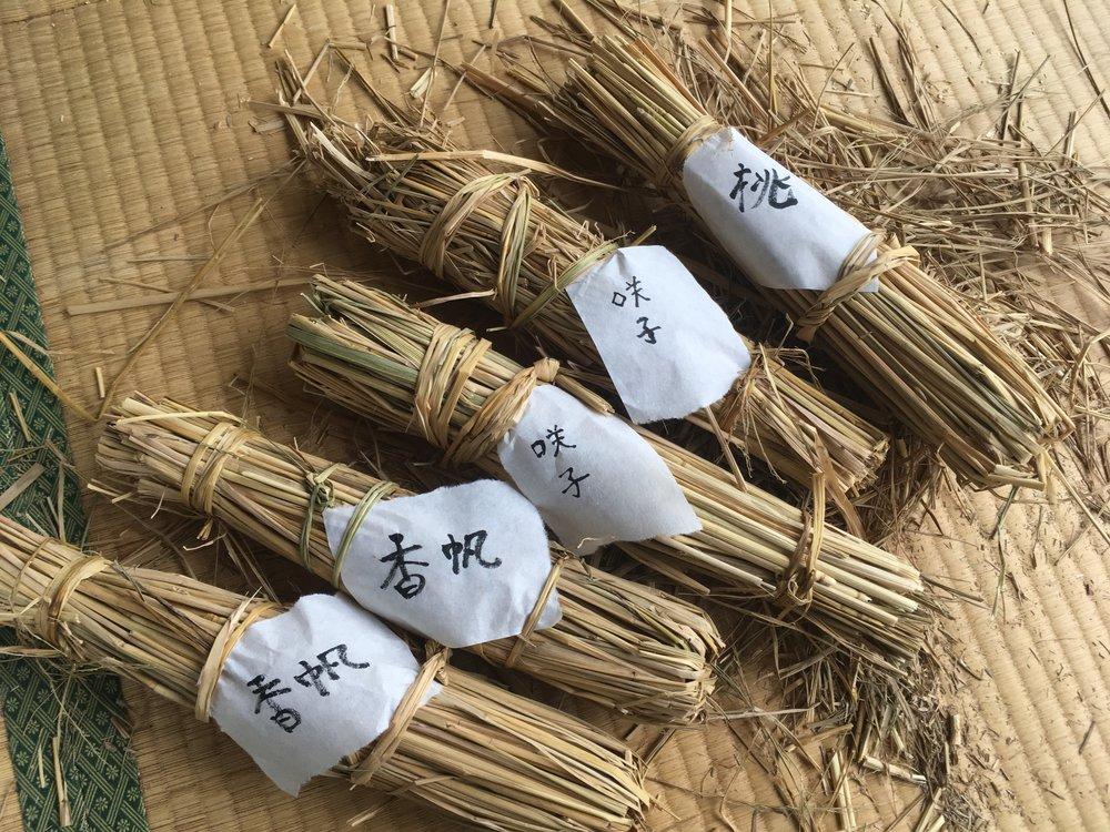 和紙に名前を書いて自分がつくったのがどれか分かるように。
