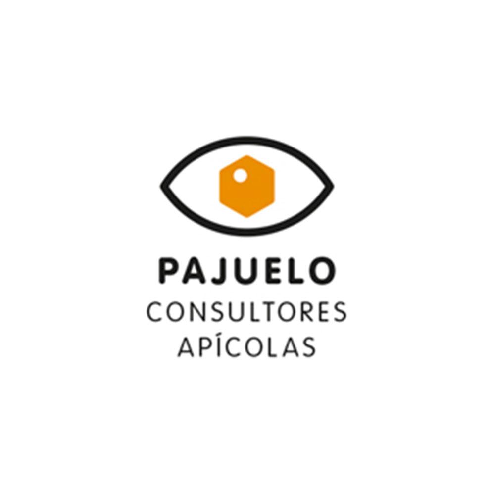 Pajuelo_logo_web.jpg