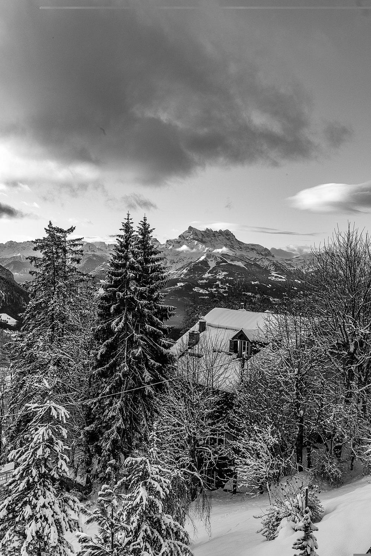 Swiss-201218-winterland-0297.jpg