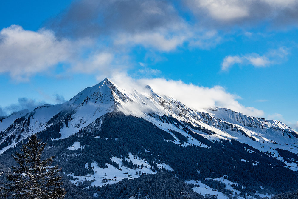 Swiss-201218-winterland-0340.jpg