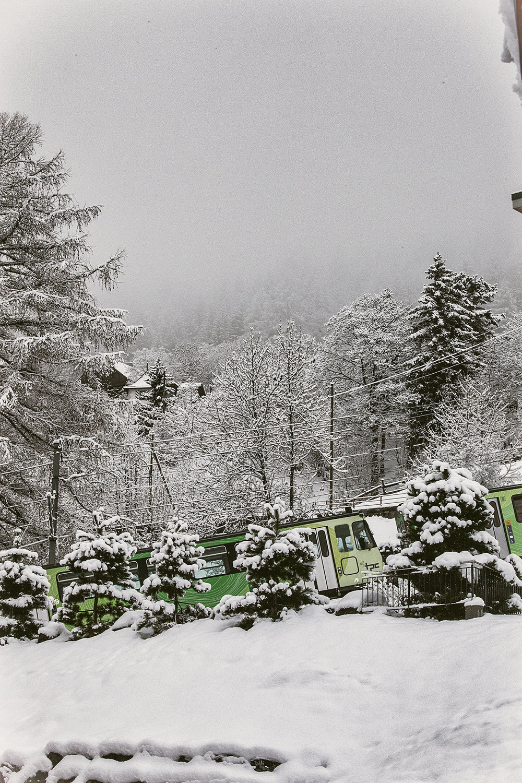 Swiss-171218-winterland-0240.jpg