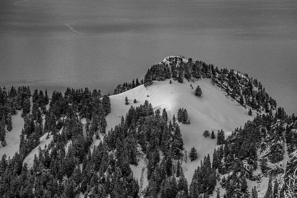 Swiss-201218-winterland-0549.jpg