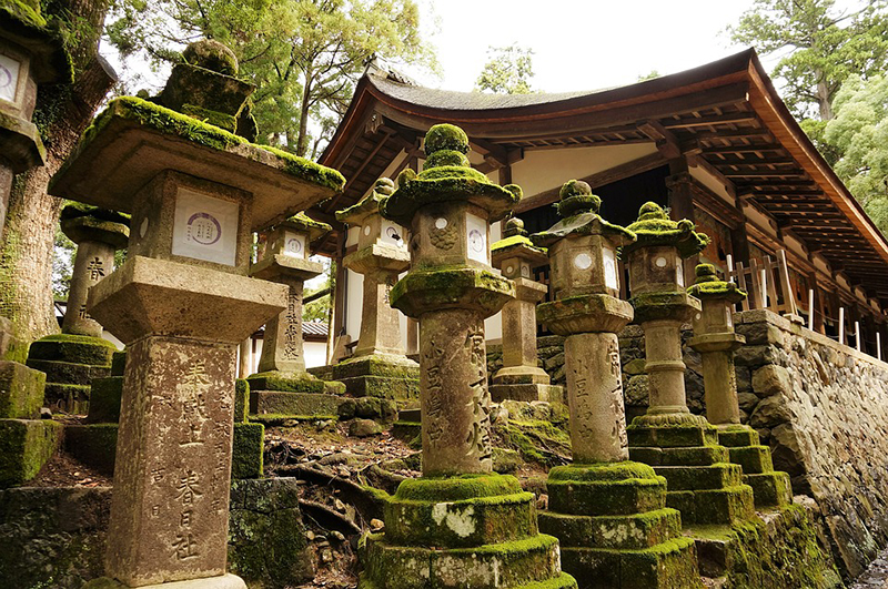 Stone lanterns at Kasuga Taisha Shrine