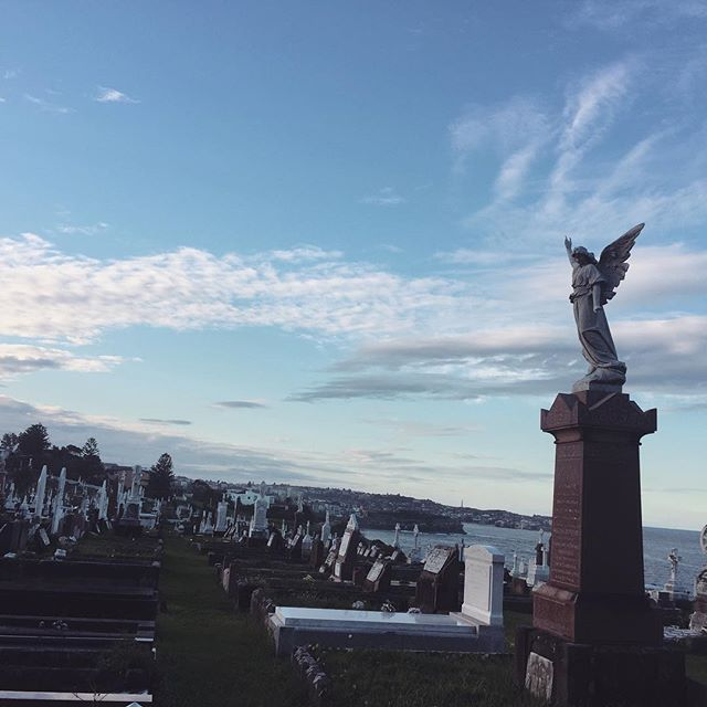 Most try to avoid the mysterious and uncanny graveyards of our world. However, some are quite beautiful like this one just around the corner from where we live 😊. It's peaceful to walk through and has a lot of history. And overlooks the coastline!!! Have you ever seen an amazing cemetery before? Or even a super creepy one 👻? Tell us about it  #theedithub #travel #wanderlust #graveyard #cemetery #coastline #passport #instavideo #videoediting #gopro #goprotravel #goproedit #neverstopsmiling #neverstoptravelling #photooftheday #videooftheday #ghosts #sydney #instatravel