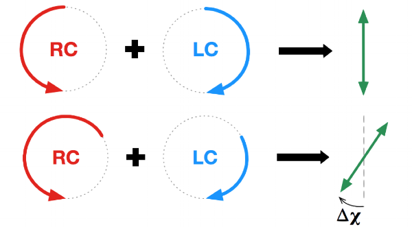 Linearly polarised light through a non-magnetic medium (top) and a magnetic medium (bottom).