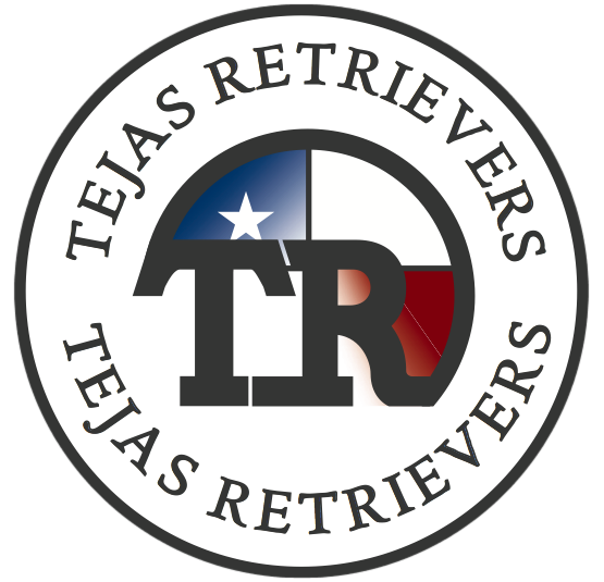 Tejas Retrievers and Gundogs
