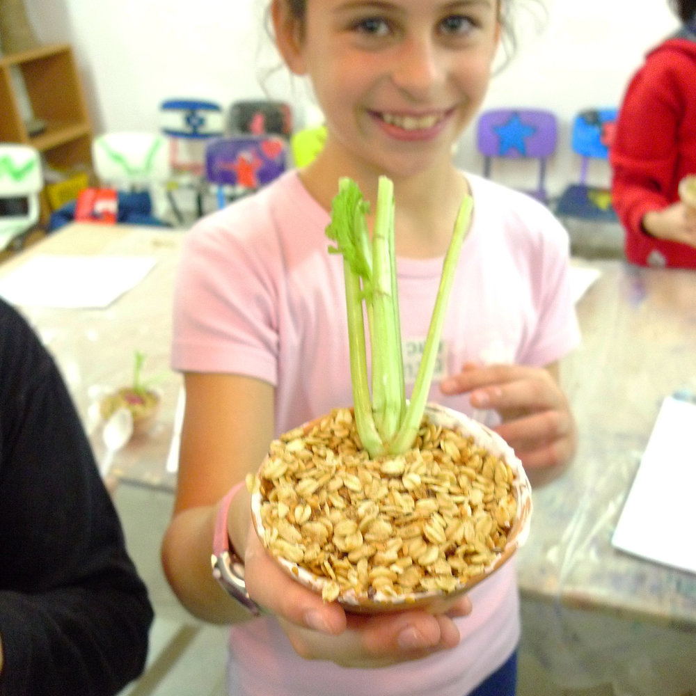 Garden to Plate - Pilot program in collaboration with Adi Sokol Katziri and Dafi Man A food based workshop that aims to enrich and emphasise its importance through fun activities, games and experience. Shaked school, Ra'anana, 2011