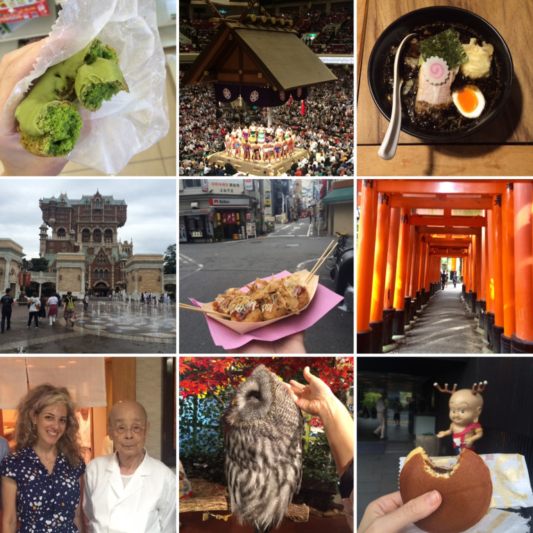 12 days in japan - a visual travel log2016/2017