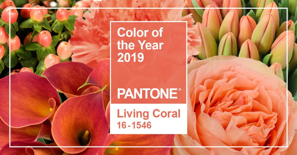 jf_pantone_colorOTYear_2019_LivingCoral_BlogCover-1400x730.jpg