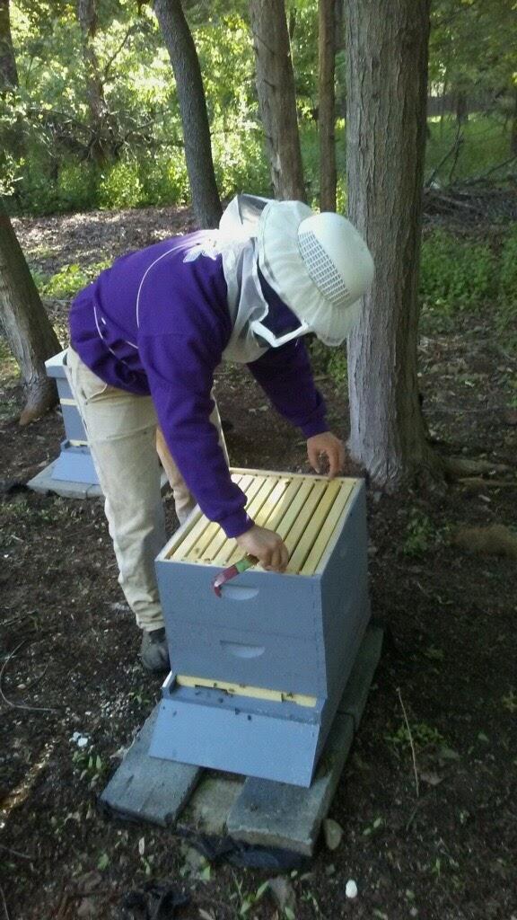 Kyle cracking Hive B