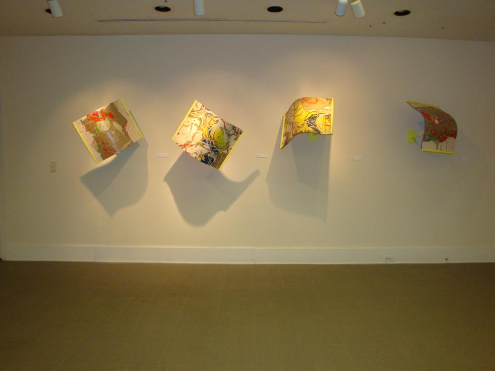 """Glow I, II, III, IV"""" Skin Series 2010"""