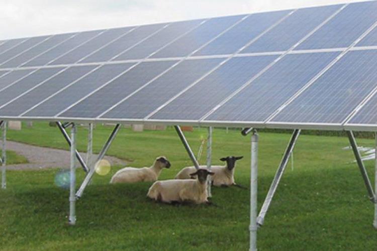 Solenergi Grindsted