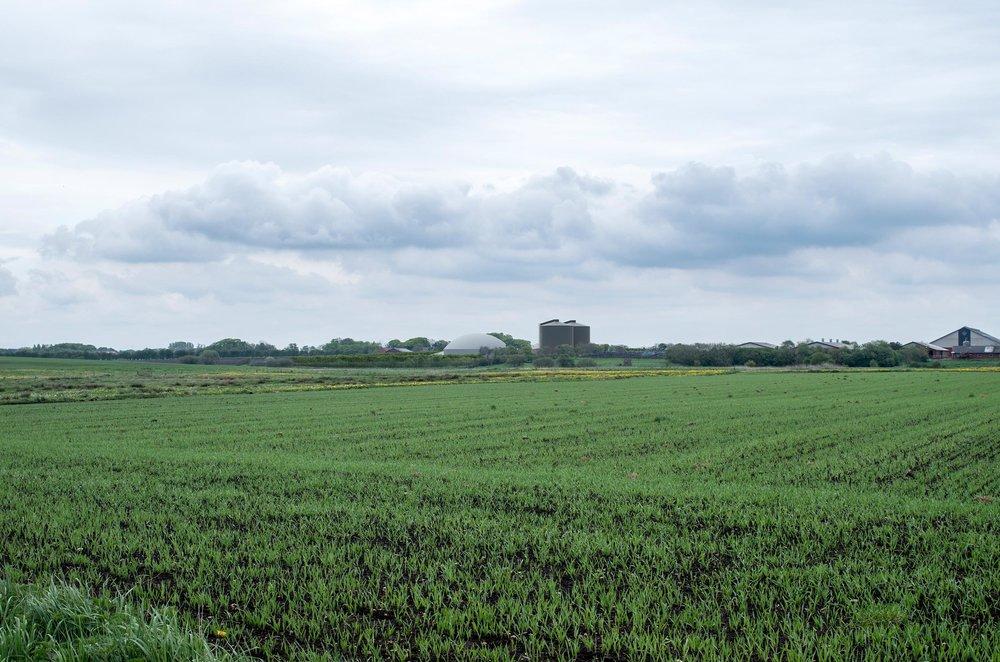 Biogas ved Ølgod_2500X1656.jpg